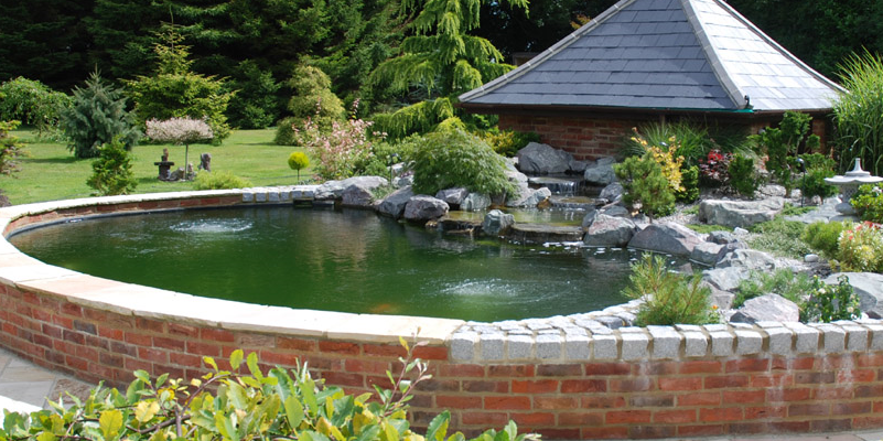 Prestige Ponds provide all types of aquatic services in ...